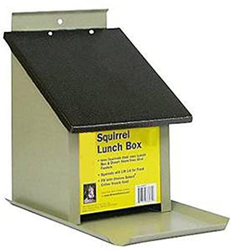 Zenport Squirrel Lunch Box Z38079 Hopper Bird Feeder, Beige