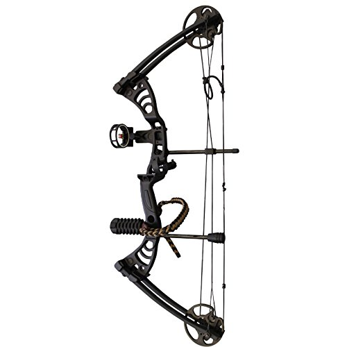 Southland Archery Supply SAS Scorpii 55 Lb 32' Compound Bow (Black w/Accessories Kit)