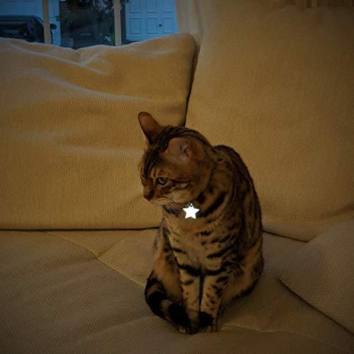 Kittyrama High Visibility Reflective Star Charm, Fits All Collars