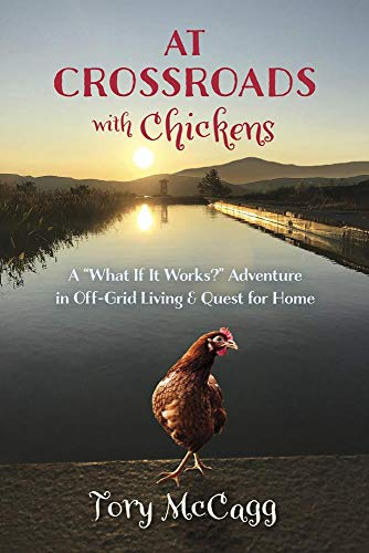 the adventures of a chicken - 8