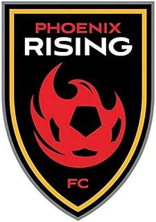 Best phoenix rising sticker Reviews