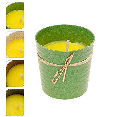 Citronella Candle 07934 Bougie Citronnelle avec Pot Coloris Aleatoire 9,5 x 9,5 cm