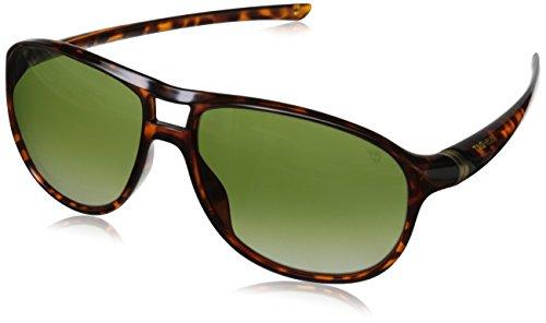 Tag Heuer 27 Degree 6043 310 6043310 Gafas de sol polarizadas ovaladas, tortuga brillante