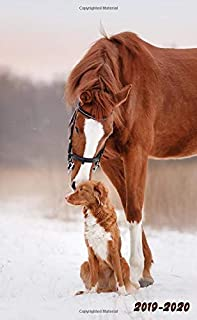 2019-2020: Nifty Winter Dog & Horse Love Two-Year Monthly Pocket Planner with Phone Book, Password Log and Notebook. Cute Small At A Glance Calendar, Organizer and Agenda.