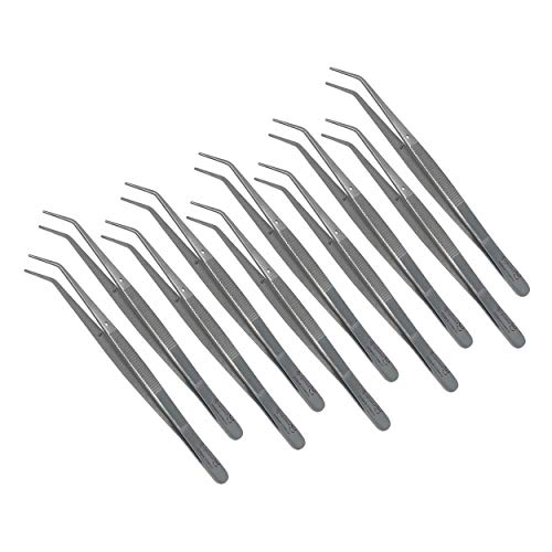 Cynamed Premium Dental College Tweezer Tools-Stainless Steel with Curved Serrated Tip Multipurpose Forceps for Oral Care Denture Teeth Cleaning (10 Pack)