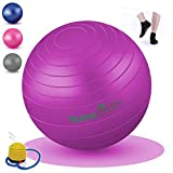 Homecircles Large Extra Thick Yoga Exercise Ball 65cm - Anti-Burst, Superior Ball with PDF Stress-Relief Exercise Guide, Gym Quality Balance & Stability Ball Exercise Equipment for Home - Purple