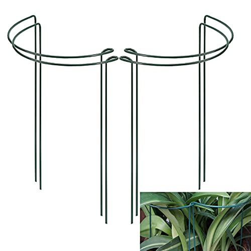 """BDFF 4 Packs Peony Support Half Round Ring Garden Plant Stakes Green Metal Plants Support Cage for Tomato, Rose, Vine Plant, Flower Growing 10"""" x 15.8"""""""