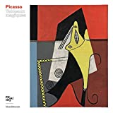 Album Picasso. Tableaux magiques