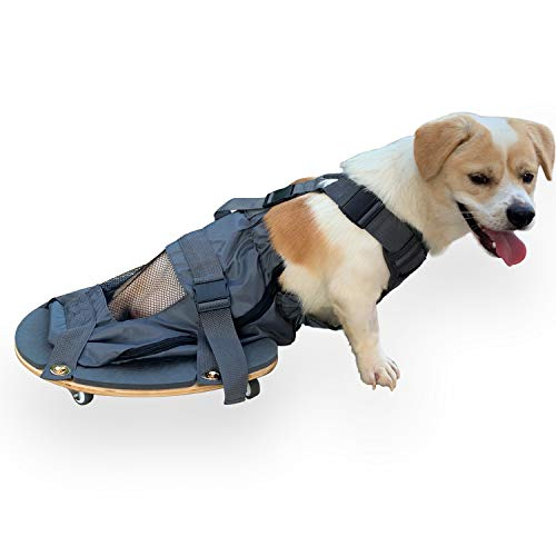 derYEP Dog Scooter Wheelchair for Rear Legs paralyzed Dog Protects Chest and Limbs… (XXS)