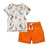 Allence Kleinkind Kinder Baby Jungen Blumendruck T-Shirt Tops + Cartoon Streifen Hosen Outfits