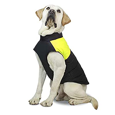 Profusion Cicle Pet Clothes Waterproof Zipper Jacket Coat Sport Style Dog Clothes with Double D-shaped Buckle for Large Dogs Fluorescent Green 4XL