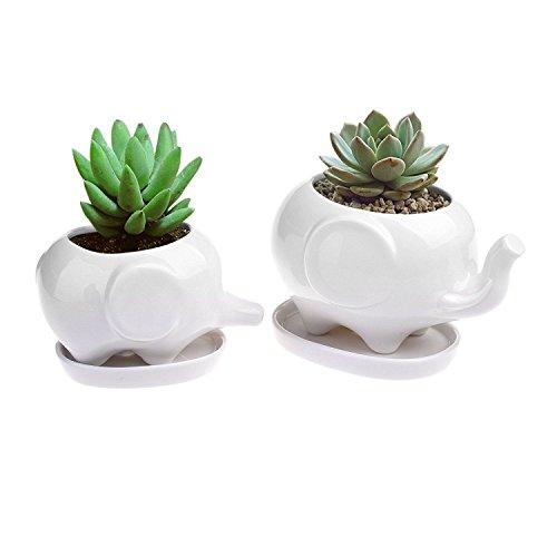 Sea Star Set of 2 Cute Elephant Flower Pot,Modern White Ceramic Succulent Planter Pots / Tiny Flower Plant Containers (Elephant)
