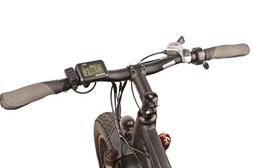 DJ Fat Bike Electric Bike