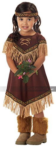 Lil' Indian Princess Halloween Costume - Toddler Size 3T - 5T