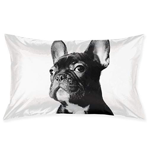 TIANDYXIE Throw Pillows Covers French Bulldog Cushion Case Pillowcase Home Sofa Couch 20 x 30Inches Pillowslips