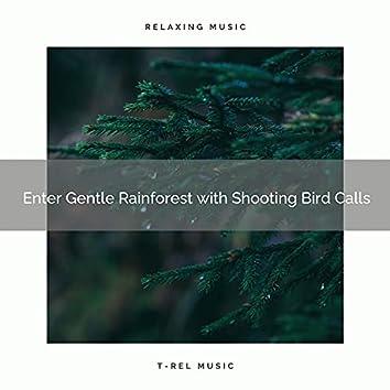 ! ! ! ! ! ! ! ! ! ! Enter Gentle Rainforest with Shooting Bird Calls