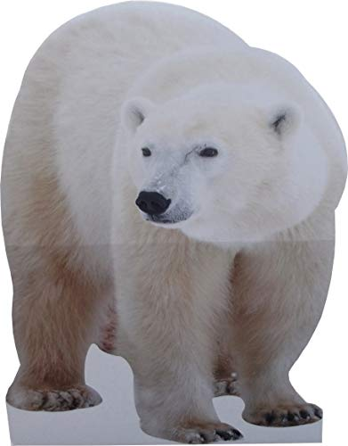 aahs!! Engraving Animal Life Size Cardboard Cutout Stand Up | Standee Picture Poster Photo Print (Polar Bear)