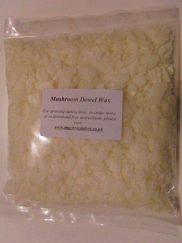 Mushroom Wax Cire pour chevilles champignons