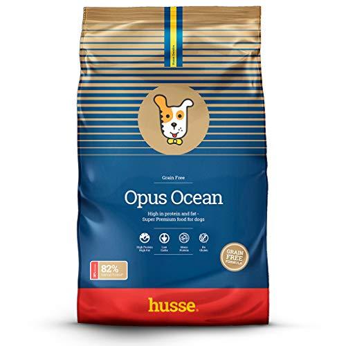 Husse - Opus Ocean 2 Kg   Pienso para Perros   Pienso hipoalergénico y gastrointestinal   Sabor salmón y Patatas Ingredientes
