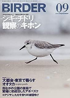 BIRDER(バーダー)2019年9月号 シギ・チドリ観察のキホン