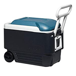 Igloo Quart MaxCold Cooler