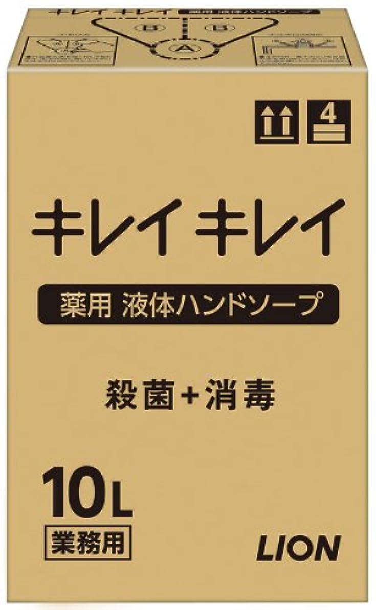 サイズ丘影【大容量】キレイキレイ 薬用ハンドソープ10L