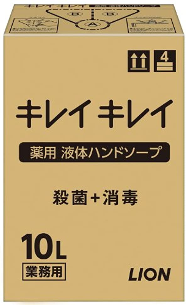 練るメインボーダー【大容量】キレイキレイ 薬用ハンドソープ10L