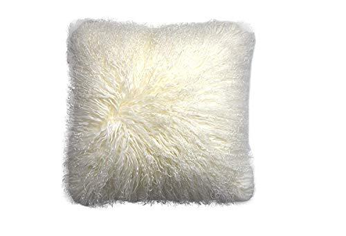 10 best sheepskin pillow cover 20×20 for 2020