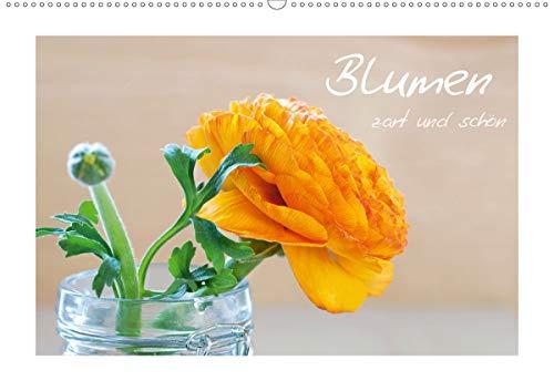 Blumen zart und schön (Wandkalender 2021 DIN A2 quer)