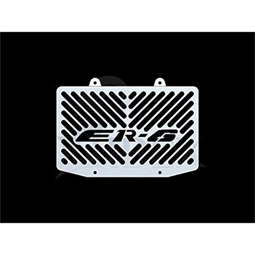 Kawasaki ER-6 ER6 n/f BJ 2005-08 Kühlerabdeckung Wasserkühler Kühlergrill Kühlerschutz Kühlergitter Kühlerschutzgitter Kühlerverkleidung Logo silber