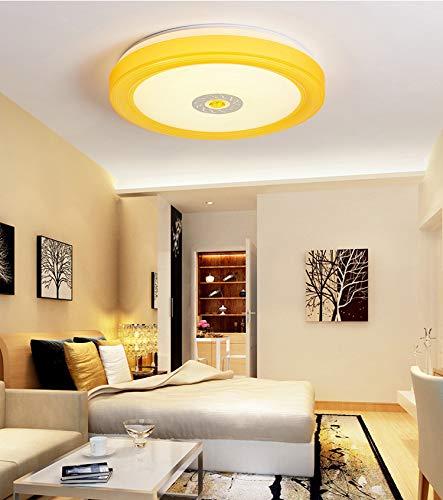 Tonda Ledapp Voice Intelligent Control Plafondlamp met afstandsbediening, geschikt voor keuken, badkamer, slaapkamer, drie jaar garantie diameter50MM Oranje.