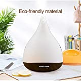 Essential Oil Nebulizers Review and Comparison