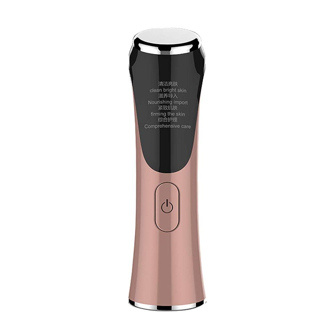 辞書オゾン性別多機能4の1つの家の使用顔の皮の若返りの器械の美装置、4モードの専門の携帯用皮の鉱泉の心配の調子を整えるマッサージャー,RoseGold