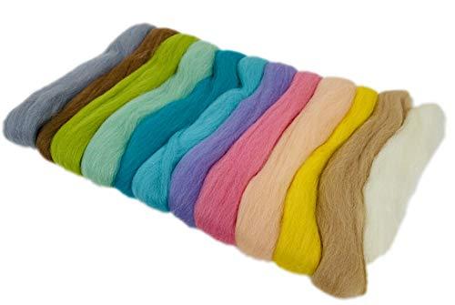 BUSDUGA - Wollvlies buntes Set - Merino Schafwolle - 12 Farben in der 50gramm Packung (Farbenmix 2)