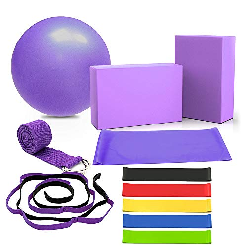 DALV 11 Pieces Yoga Set Beginner Equipment, Fitness Yoga Ball (10 inch) Yoga Blocks 9×6×4 inches, Stretch Strap Resistance Loop Bands (5-40LBS) Exercise Yoga Cotton Strap Kit