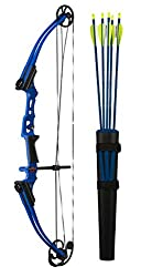 Best Compound Bows for Archery in 2020 - Reviews & Buyer's Guide 13
