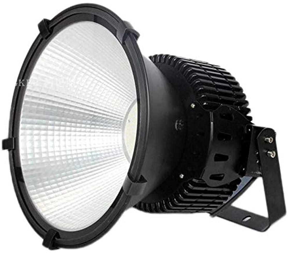 礼拝弾性ターミナルデイライトホワイト300WスーパーブライトLED投光器屋外照明ウォールランプLEDフラッドライトIP66防水街灯ガーデンスポットライト防犯灯 yppss