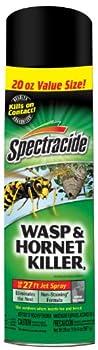 Best hornet spray Reviews