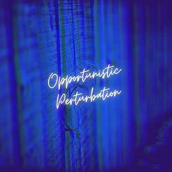 Opportunistic Perturbation