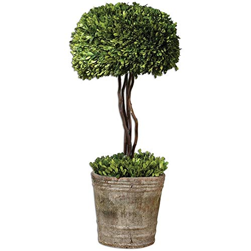 Uttermost Tree Topiary Preserved Boxwood in Natural Evergreen