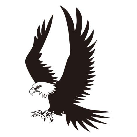 Flying Eagle Vinyl Wall Sticker verwijderbare Decal Living Room Bedroom Home Decoration