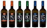 Falanghina Campania IGP: un vitigno di alta qualità che da secoli ammalia gli uomini con il suo profilo aromatico, fatto di note floreali, aromi fruttati e sentori minerali dovuti alle terre vulcaniche da cui proviene. Le sue caratteristiche intrinse...
