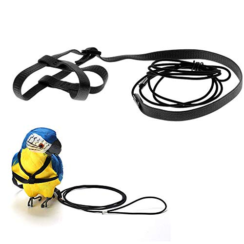 ASOCEA Adjustable Parrot Bird Harness Leash Anti-Bite Flying Training Rope Pet Outdoor Traction Fit Budgerigar Lovebird Cockatiel Mynah Small Birds - Black
