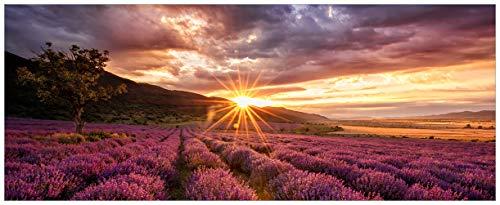 Wallario Acrylglasbild Lavendelfeld bei Sonnenuntergang - Sonnenstrahlen - 50 x 125 cm in Premium-Qualität: Brillante Farben, freischwebende Optik