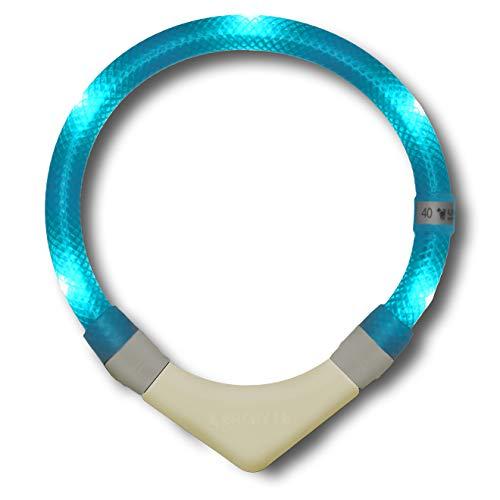 LEUCHTIE® Leuchthalsband Plus NL türkis Größe 47,5 I nachleuchtend phosphoreszierendes Batterieteil I LED Halsband für Hunde I 100 h Leuchtdauer I wasserdicht I enorm hell