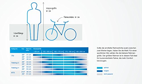 FISCHER Damen – E-Bike Trekking VIATOR 5.0i (2019), grau matt, 28″, RH 44 cm, Brose Mittelmotor 50 Nm, 36V Akku Bild 6*