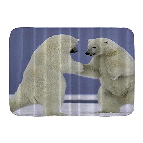 DAOPUDA Antideslizante Alfombra de baño,Los Osos Polares juegan en el Arte Animal del Suelo nevado,Altamente Absorbente Alfombrilla de Piso para Dormitorio Baño Salon