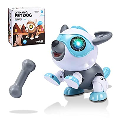 DIY Toys for 3-12 Year Old Boys or Girls, STEM DIY Robot Dog, Electronics Robot Puppy Robo Pets with RGB Light Flashing Eye & Touch Control, Educational Interactive Gift for Kids
