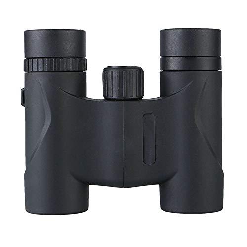 DKEE 12x32HD Straight Binoculars Tragbares Dachprisma Weitwinkelokular Wasserdicht BAK4 FAC Multilayer-Beschichtung Jagen & Fischen/Trekking/Höhlenforschung/Vogelbeobachtung Schwarz