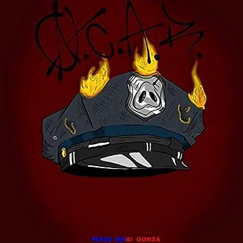 Acab (feat. sinki & gonza)